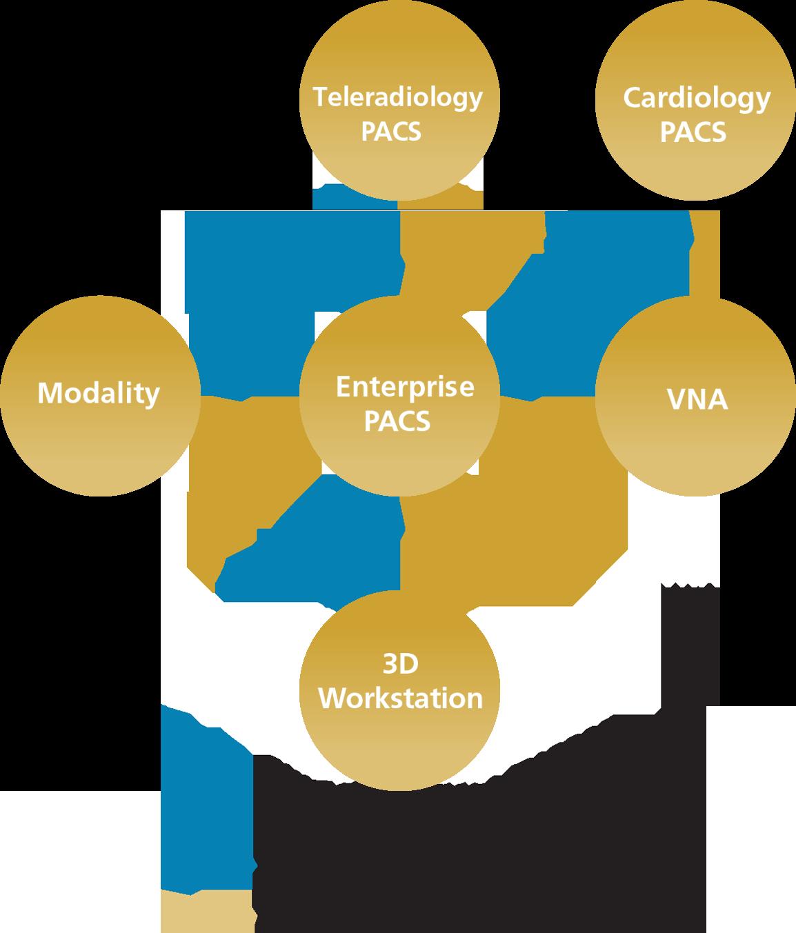 VNA Diagram